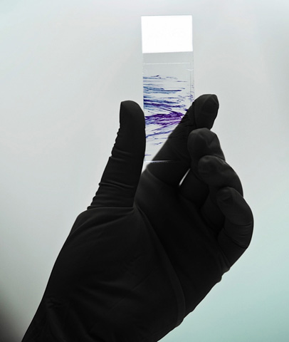 cit-em-meio-liquido