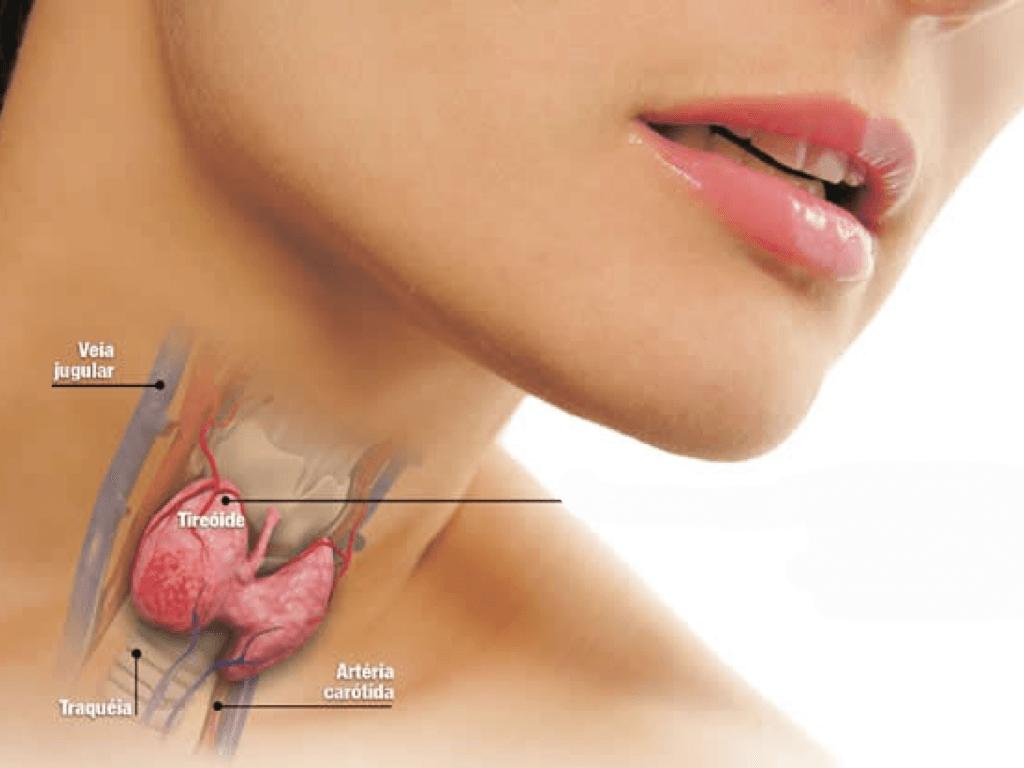 Hormônios, cuidados e monitoramento