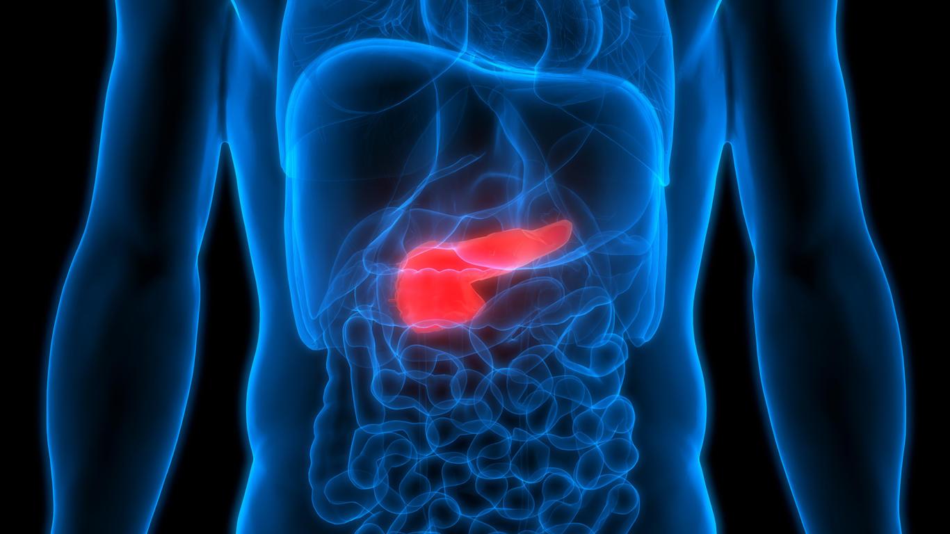 Inflamação no pâncreas pode causar danos graves ao sistema digestivo